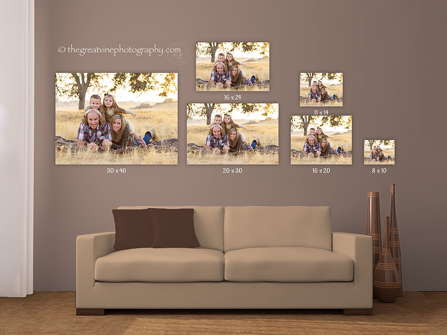 Wall Art Wednesday / What Size Will You Choose? | The Great Vine ...